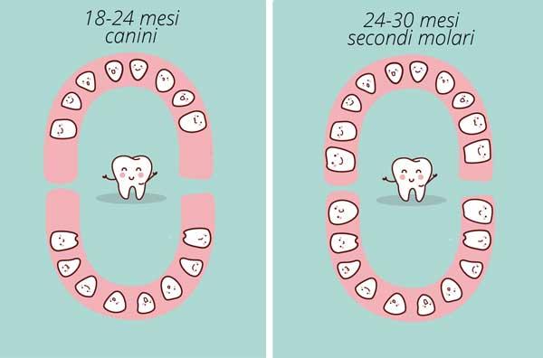 Calendario Dentini.Il Calendario Dei Dentini Da Latte